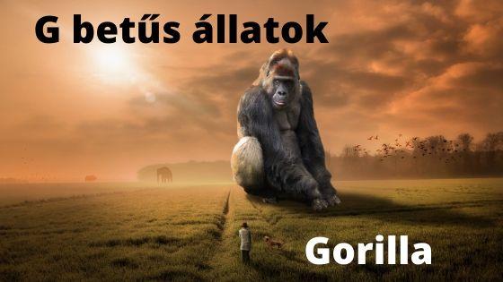 G betűs állatok