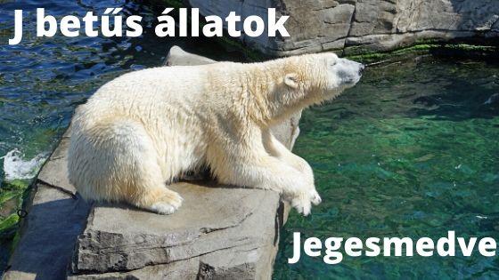 J betűs állatok